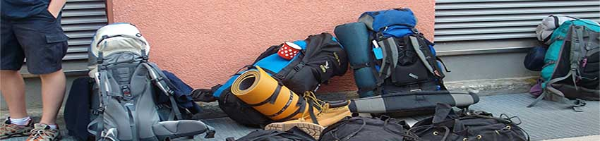 Employing backpackers – be a fair employer and stay on the right side of the law